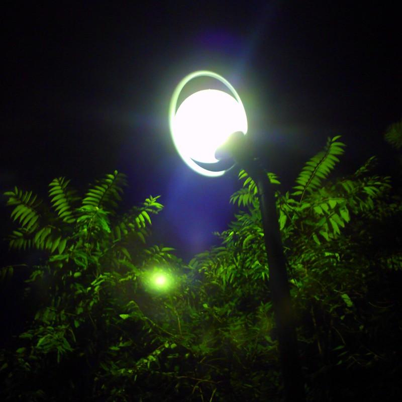 公園のライト