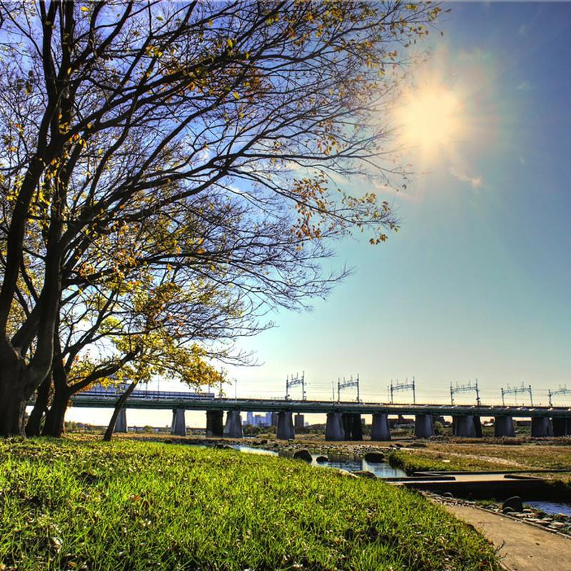 朝日と陸橋の情景