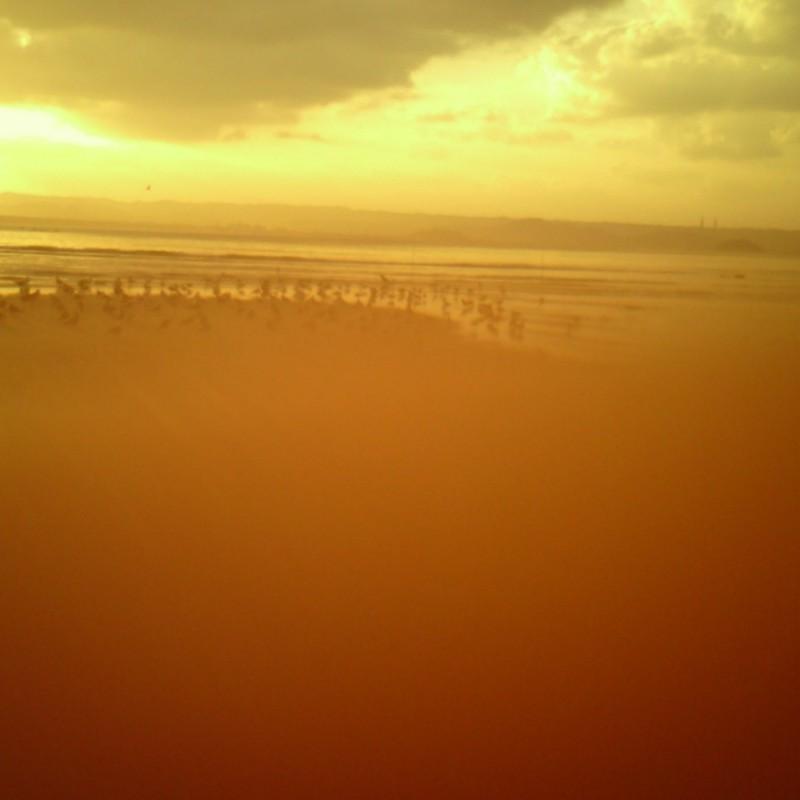 浜辺で焦がれる