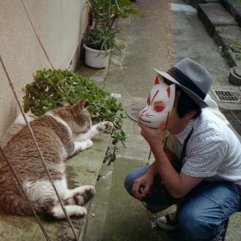 Cat VS Fox 1本勝負