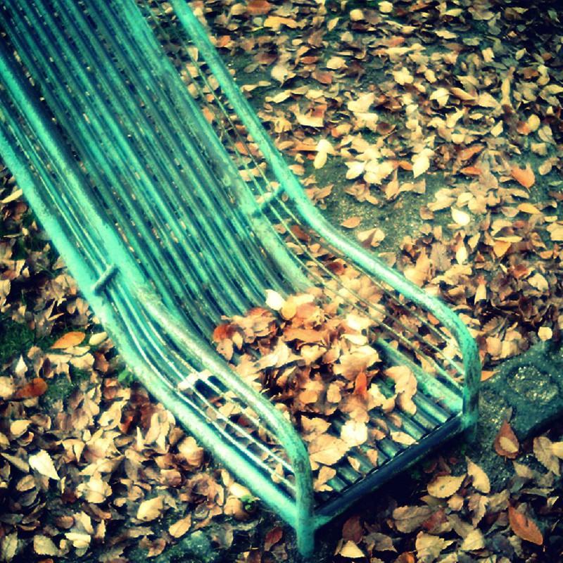 落ち葉が遊ぶ