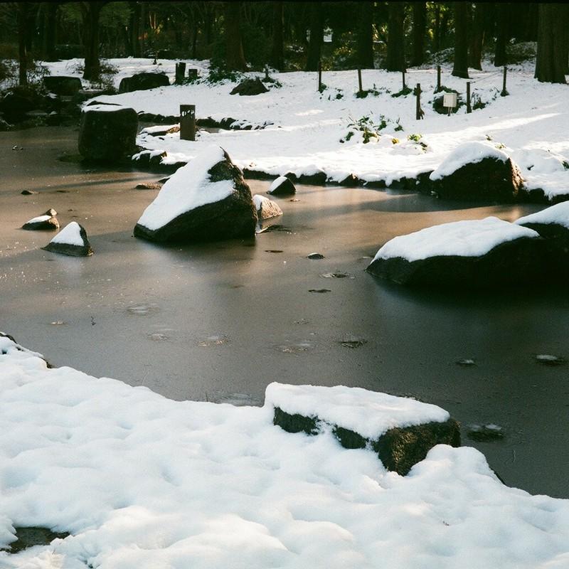 雪の朝(二) / 結氷