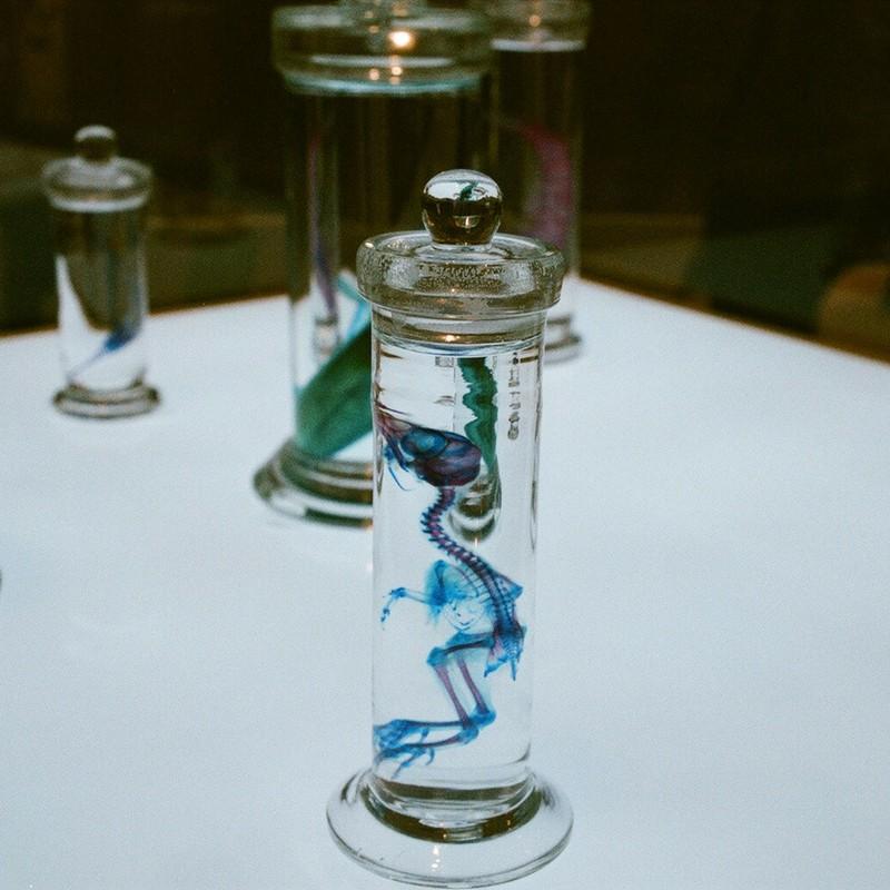 限りなく透明に近いブルーな標本