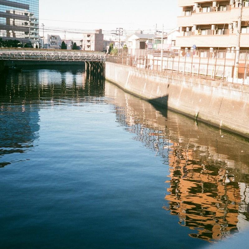 ゴジラが来た川