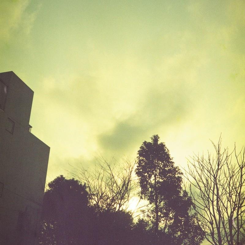 冬の黄金色な午後