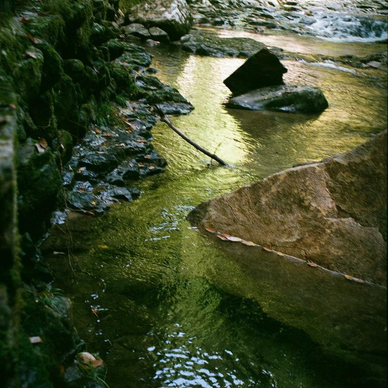 良い水の日