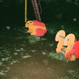 マンボウの夜