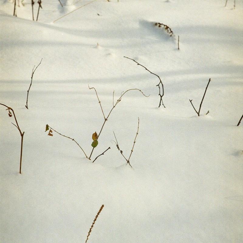Velvet Snowground