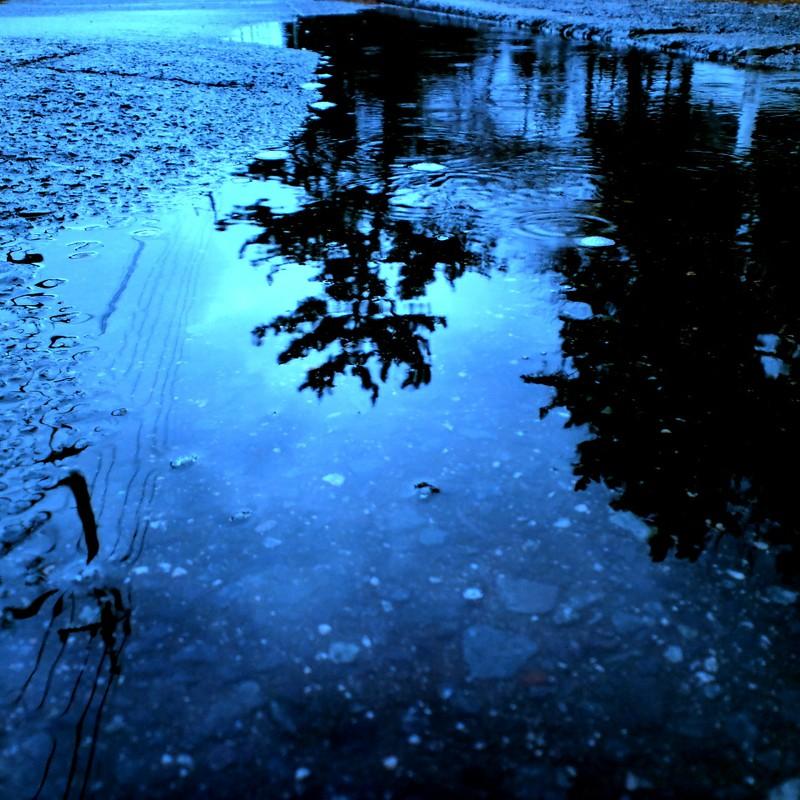水面反射*
