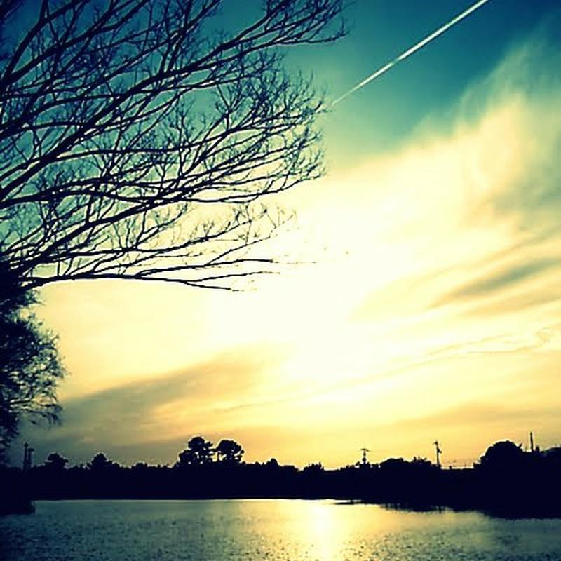twilight*