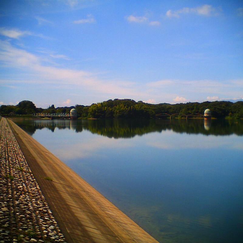 夏の貯水池