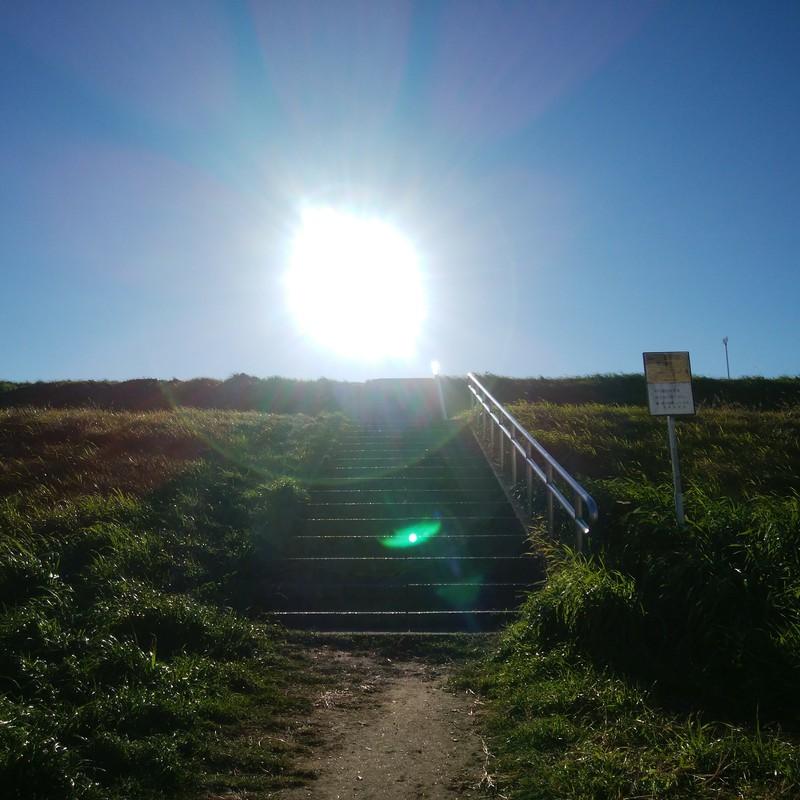 日の当たる階段