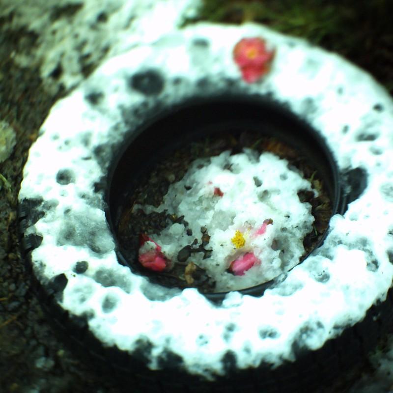 放置されたタイヤ、雪の日に