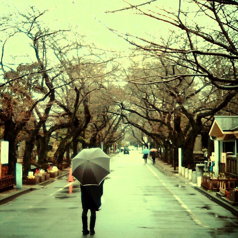 雨×道×woman