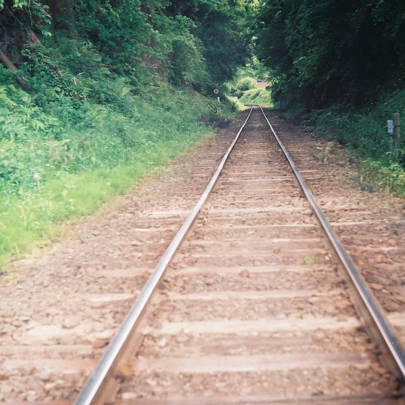 緑の中を走り抜けてくオレンジの列車