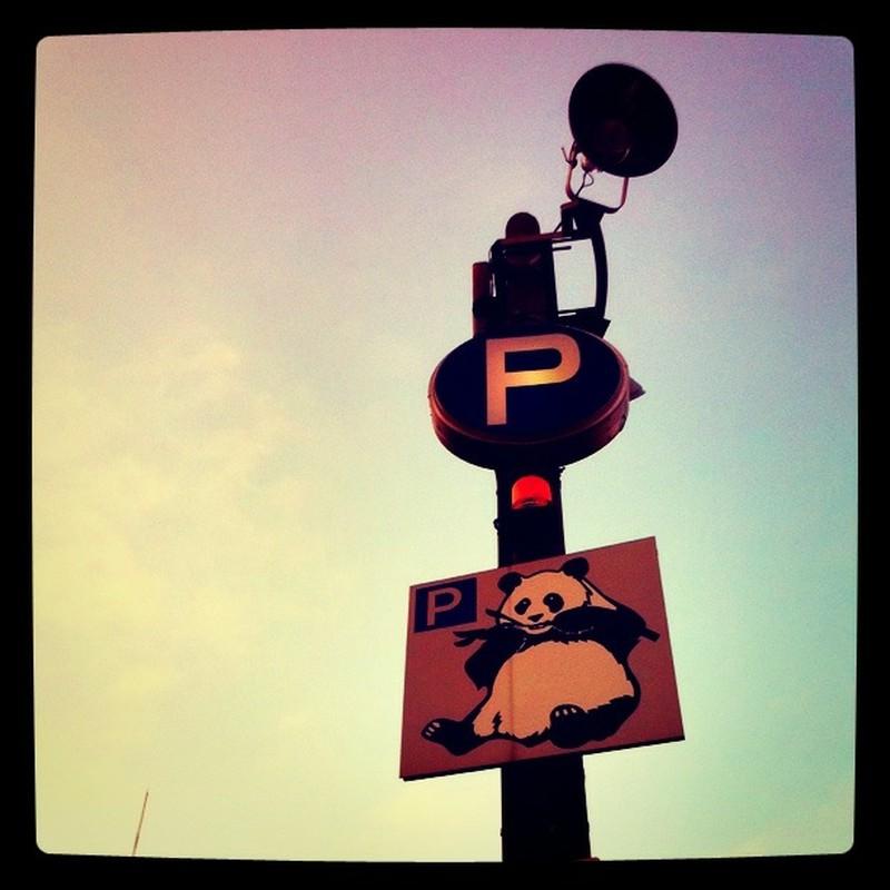 PはパンダのP