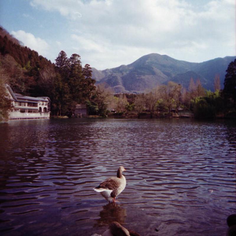 金鱗湖風景