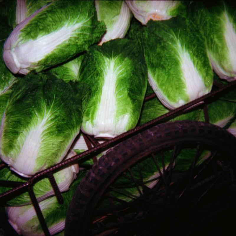 ナイト白菜