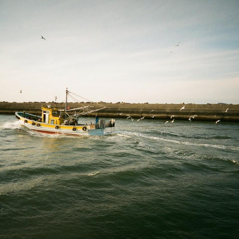 漁船を追って