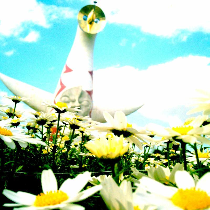 太陽の塔×マーガレット