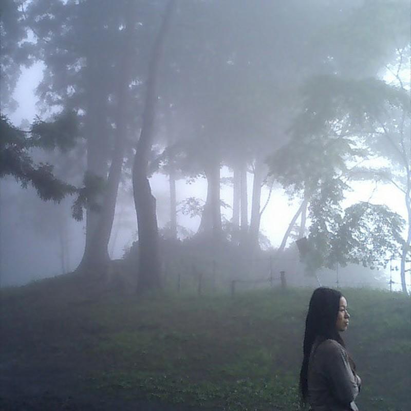霧の中の女