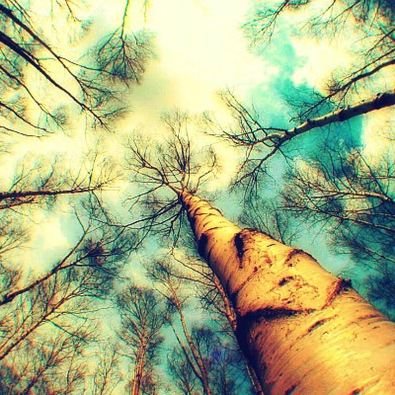 希望の空*