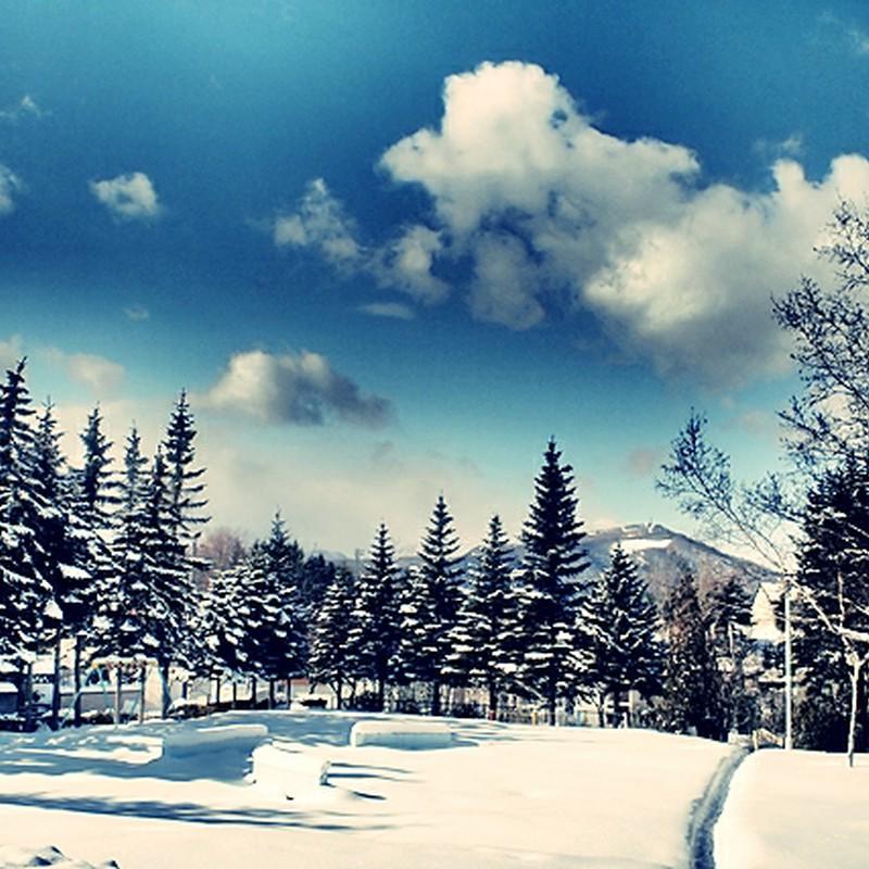 近所の冬の公園*