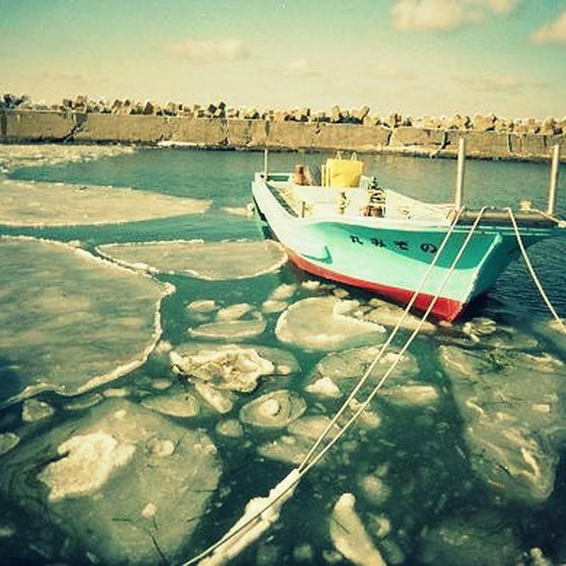 凍て付く根室港