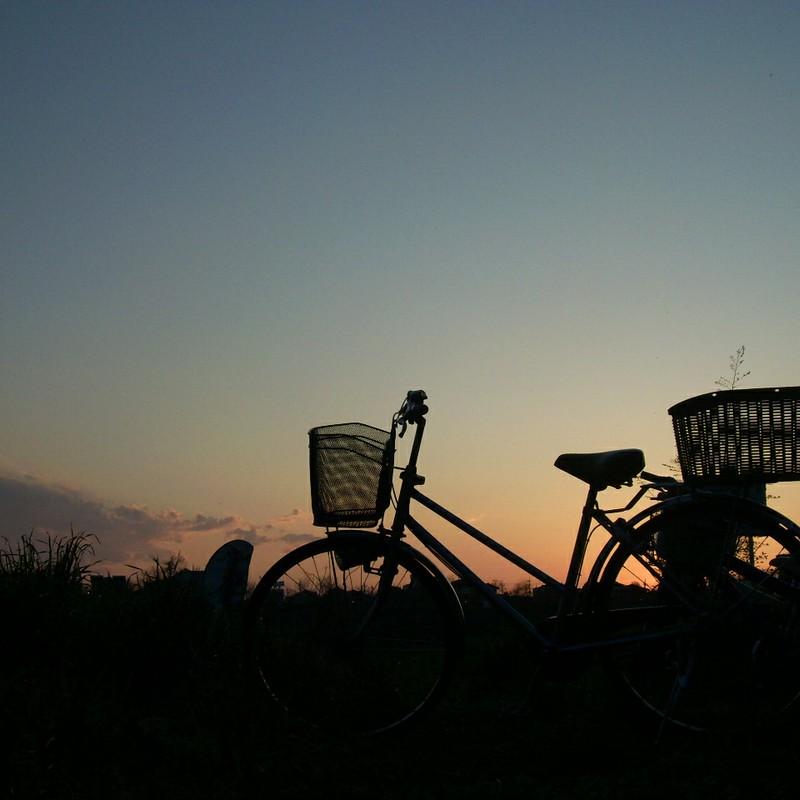 夕陽の自転車