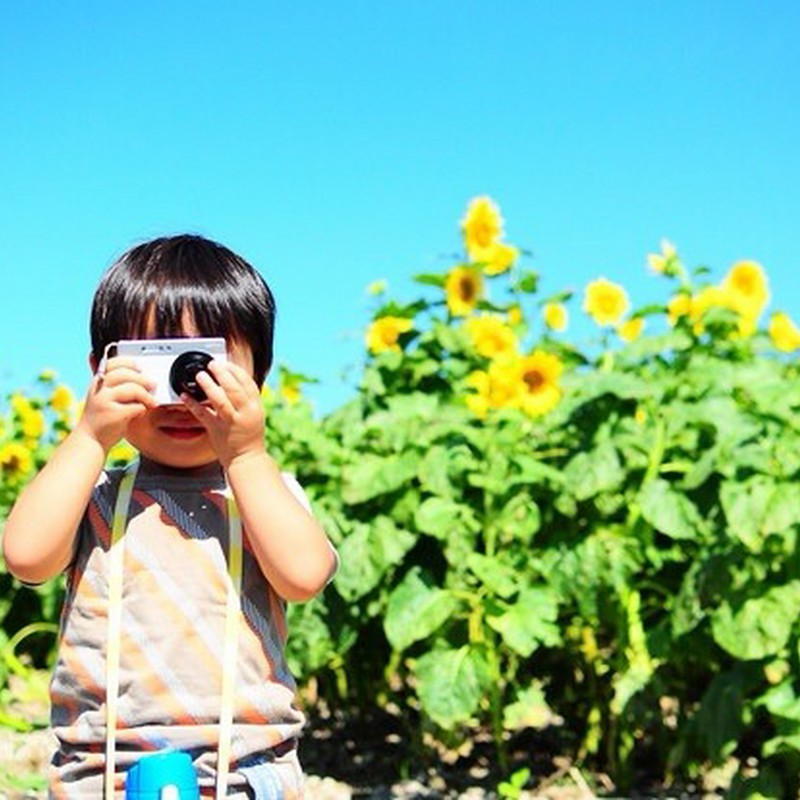 2歳の小さなカメラマン