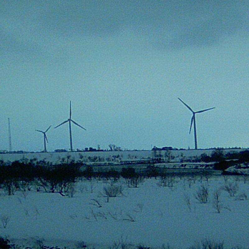 雪原と風車