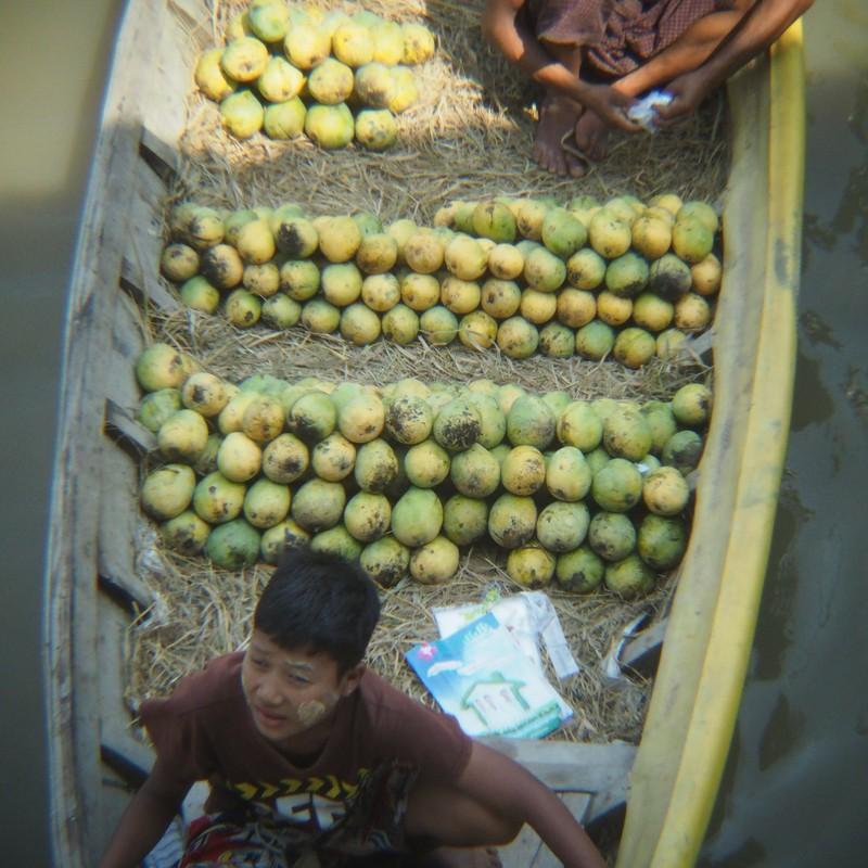 マンゴーを売る
