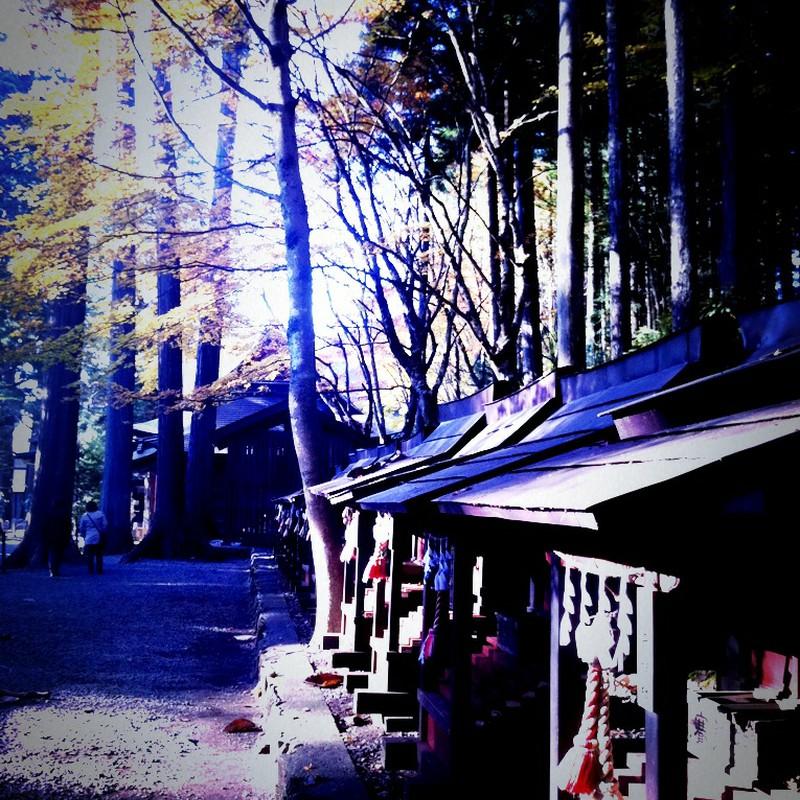 秋の神社4
