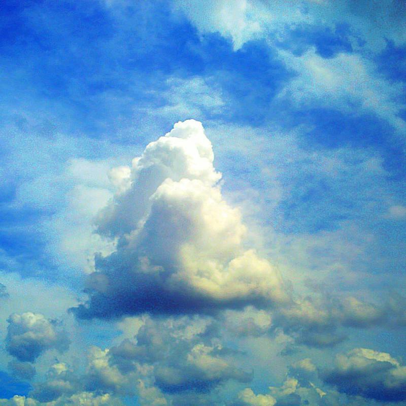 恐竜が見上げた空も今見上げる空も。