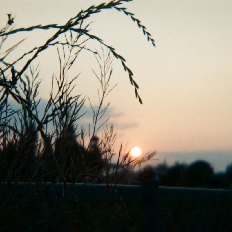 夕日を釣りに