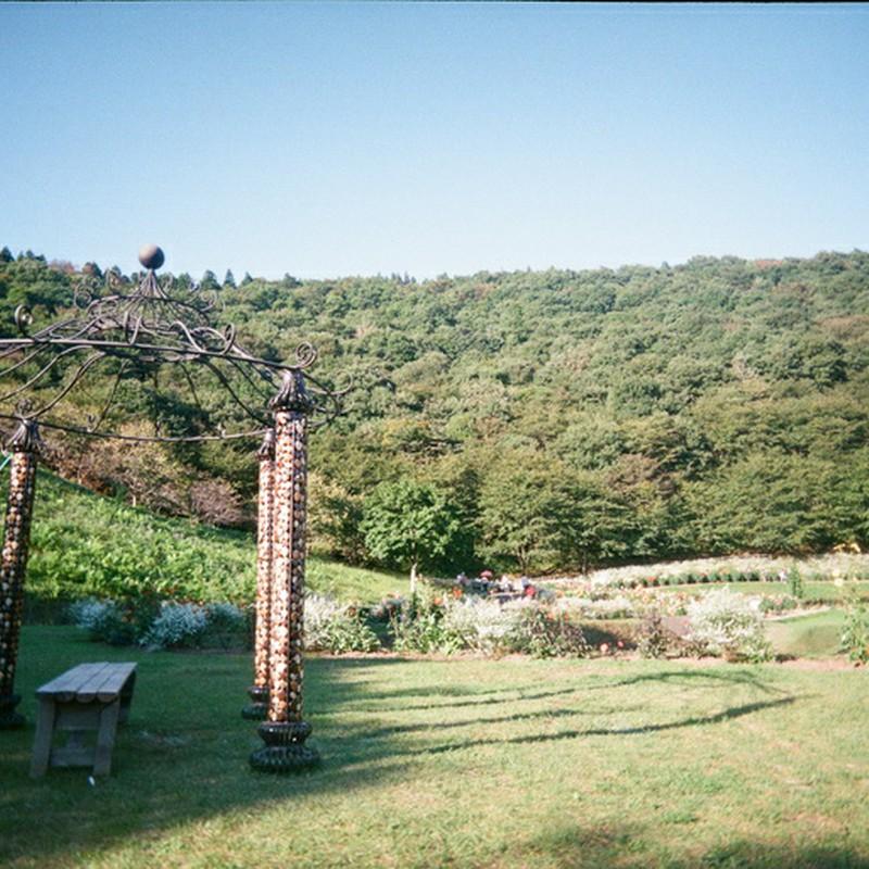 丘の上のベンチ