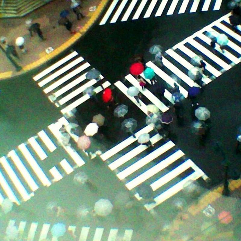 雨の渋谷スクランブル交差点