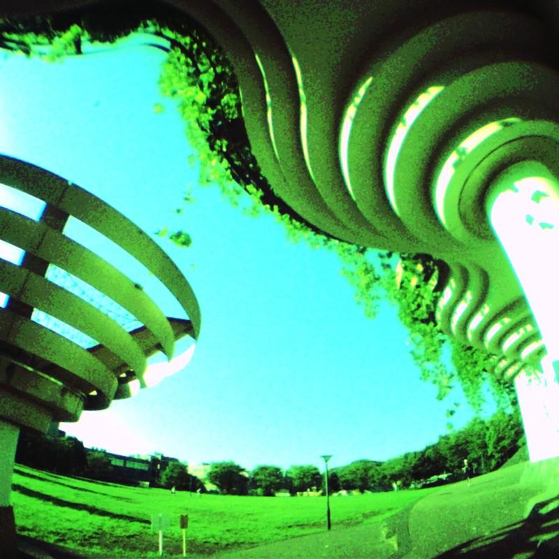 夏の公園2