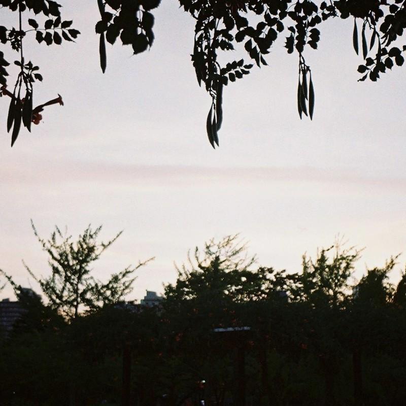 夏の夕暮れ時