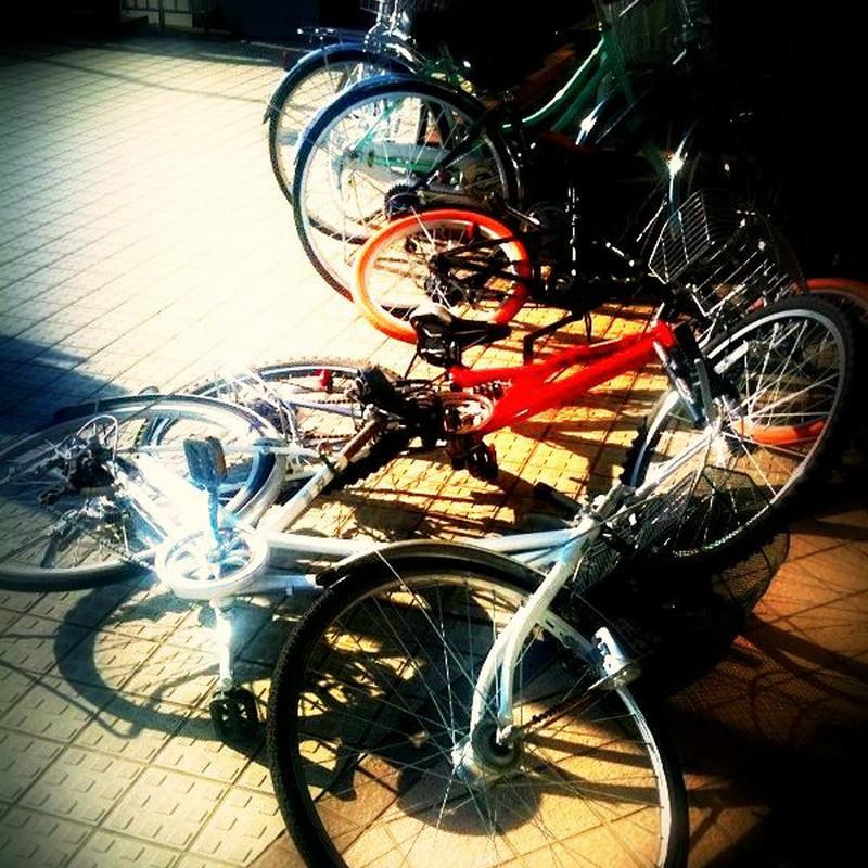 自転車将棋倒し