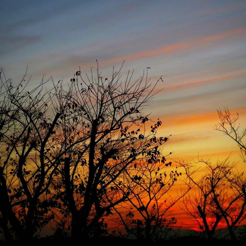 しましま夕焼け空