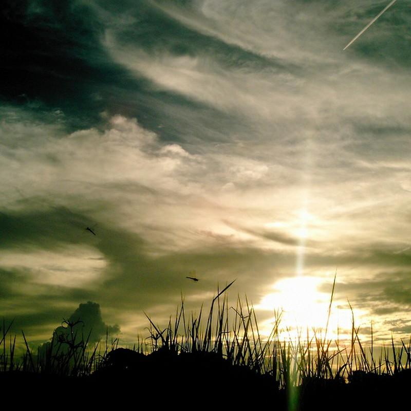 夕日と赤トンボと飛行機雲