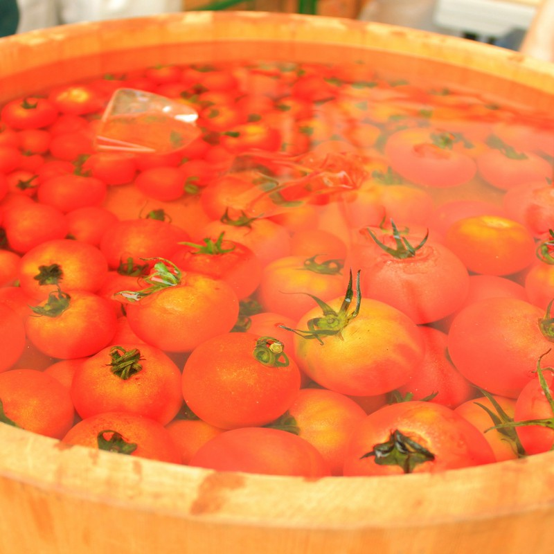 tomato*夏