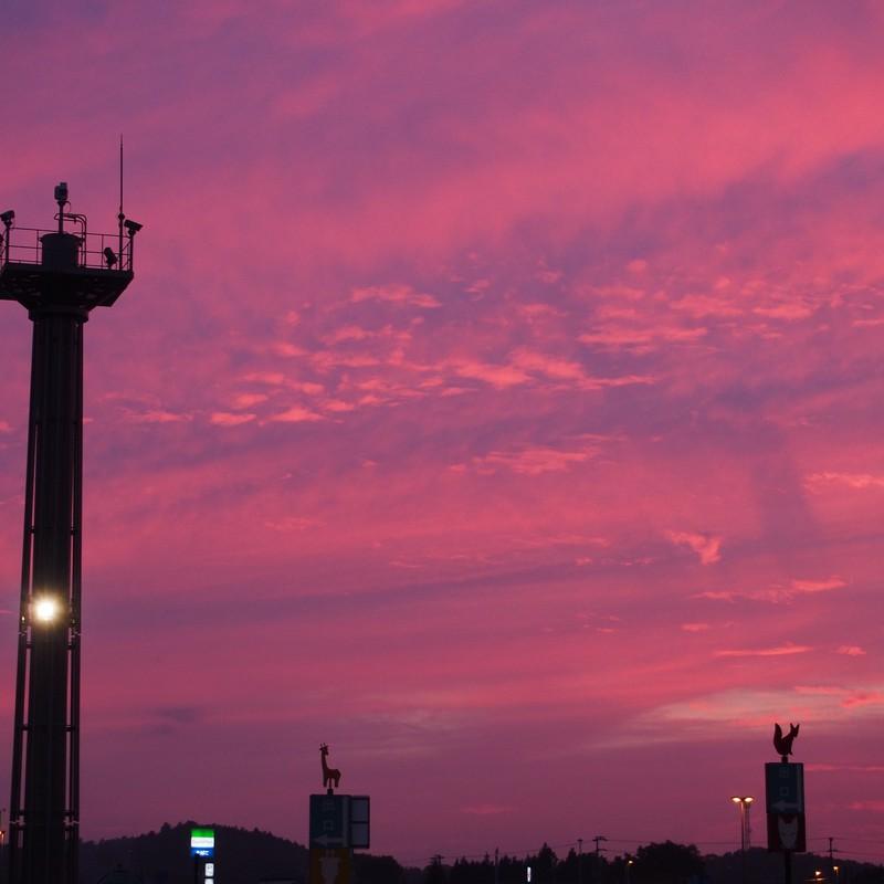 ピンクの空のキツネとキリン。