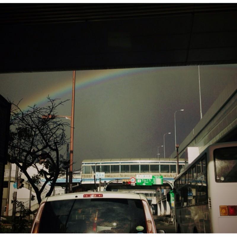 今日の虹。
