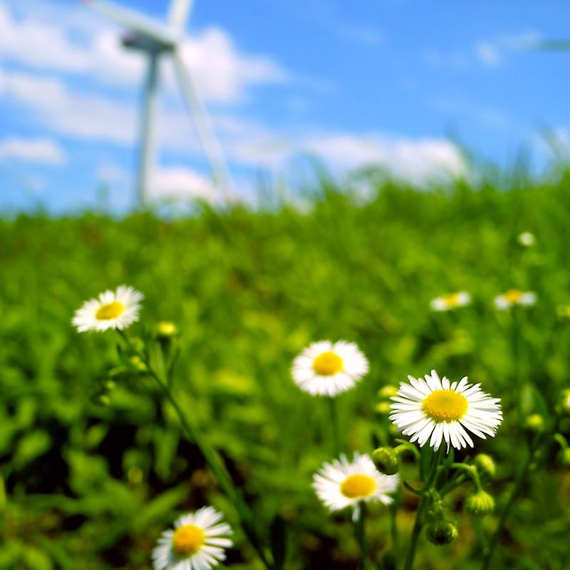 夏の風(出先・旅先88)