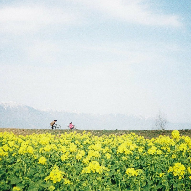 春隣(出先・旅先)
