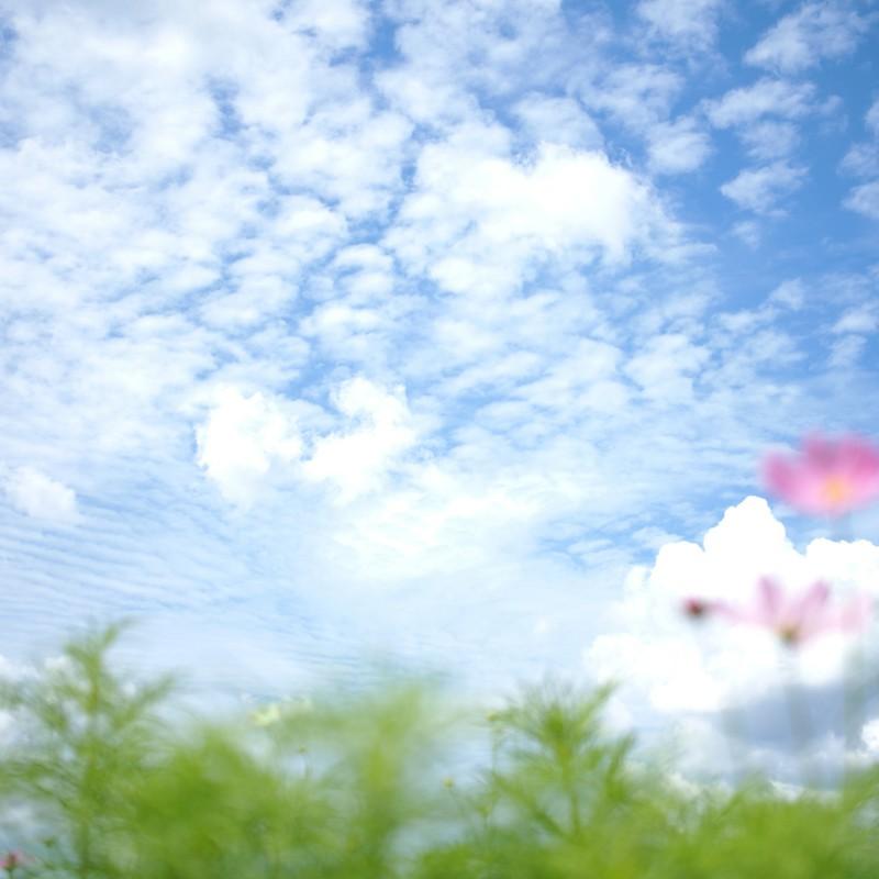 秋の空(出先・旅先)
