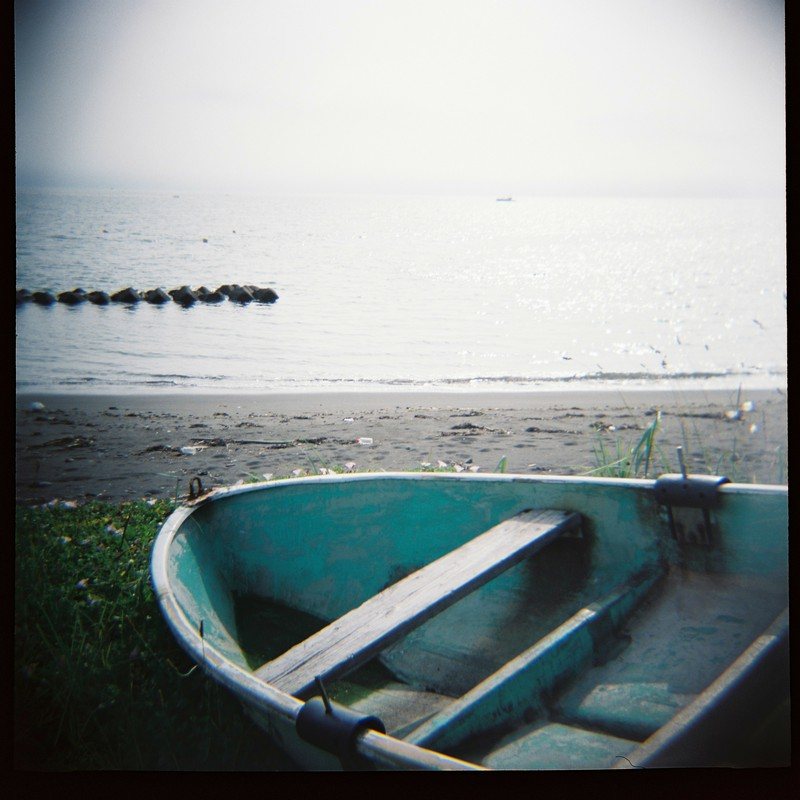 あの海に戻りたくて