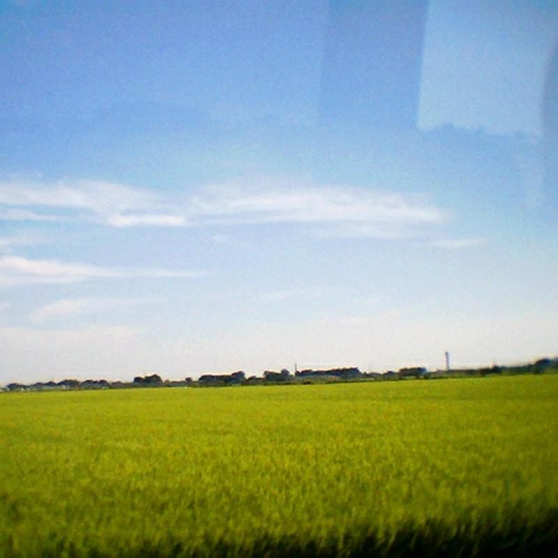 車窓から見た田園